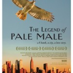 The Legend of Pale Male Movie Font